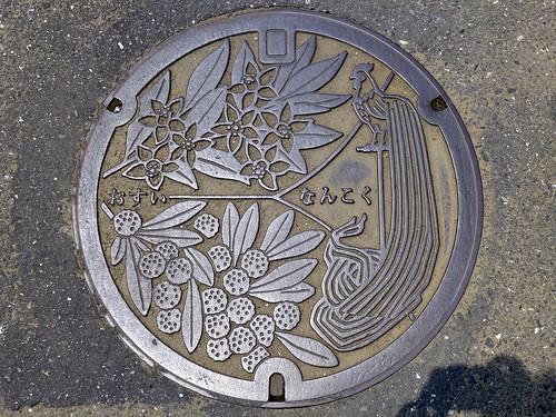 Nankoku Kochi, manhole cover 2 (高知県南国市のマンホール2)