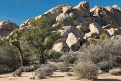Boulder Hopping Spot