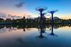 Equilibrium by Bernard Yeo