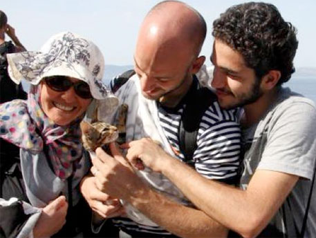 syrian-refugees-cat