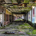Scenes from an abandoned mall, Sullivan County NY by lizcnyc1