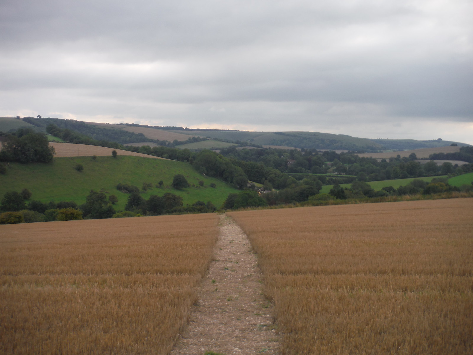 Backview along the Chalke Valley SWC Walk 250 Tisbury Circular via Alvediston