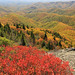 Devil's Courthouse, view looking south, Blue Ridge Parkway, Transylvania County, North Carolina 2 by Alan Cressler
