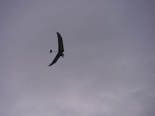 Glider above