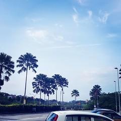 Beautiful sky.. no #jerubu #Alhamdulillah.. lama rasanya x nmpk warna biru di langit.   #skyblue #langitbiru