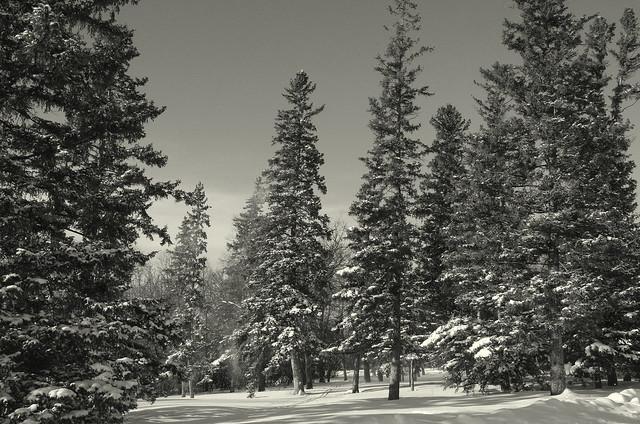 Snowy Landscape, Pentax K-5, Tamron AF 18-250mm F3.5-6.3 Di II LD Aspherical [IF] Macro