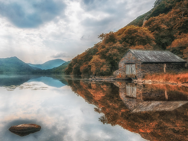The Lake ( In Explore )