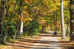 Greenbelt Lake Park