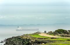 Walking SF Bay