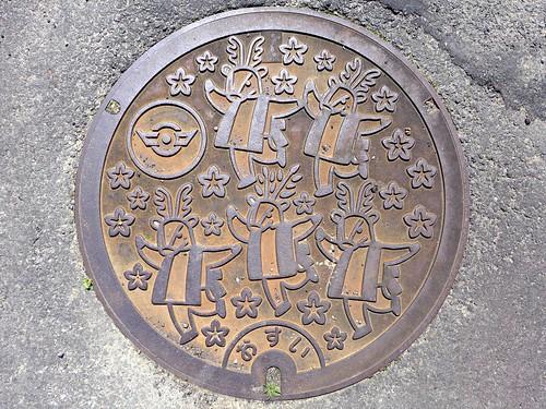 Hiromi Ehime, manhole cover 2 (愛媛県広見町のマンホール2)