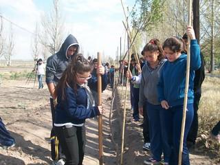 Programa-de-Reforestación-en-Santa-Rosa