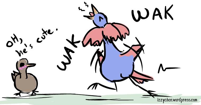 crazy looking bird dance