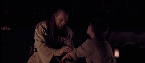 Qui-Gon and Ani