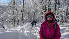 Las -podejscie na Połoninę Wetlińska - Ewelina