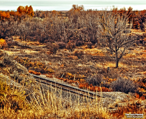 Oct 25 2015 - Fall along the BNSF railway in Big Horn County