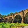 Beth and I frequently pass by the Thomas Viaduct when we're entering Pataspco State Park near our house to hike.  When it was completed in 1835, the Thomas Viaduct was the largest bridge in the US.  It was the first multi-span masonry railroad bridge buil