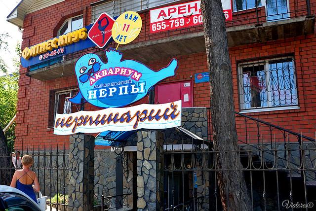 Nerpinariy. Irkutsk. Russia