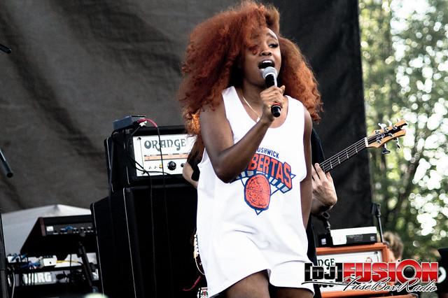 2015 AfroPunk Festival - Brooklyn, NY (2015)