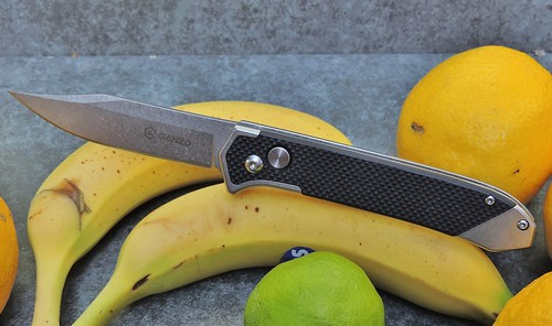 Ganzo G719 semi assisted knife