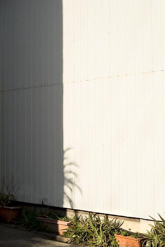JS J0 24 001 福岡市中央区 / SONY α7II × MC W.ROKKOR-HG 35mm F2.8