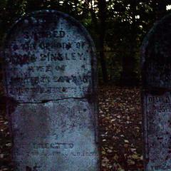 No.08 Binkley 1803 Cemetery
