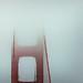 Karl @ The Golden Gate Bridge, San Francisco by Darren LoPrinzi