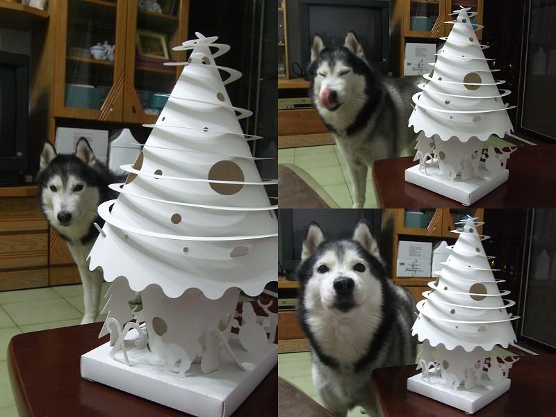 Doggy與紙箱王聖誕樹造型燈飾組06