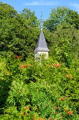 A travers la verdure - Photo of Cussey-les-Forges