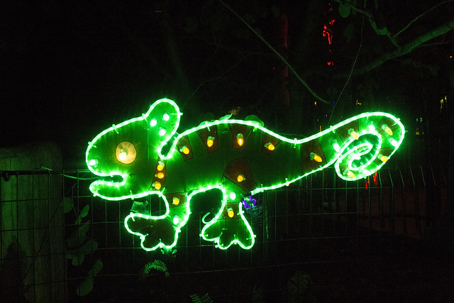 Zoo Lights_37