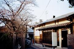 Kyoto 京都西陣(にしじん)