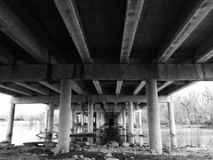 #underthebridge ##blackandwhite #pillars #bridge #concretejungle #concretehaven #whiterocklake #whiterock #lake #water #trees