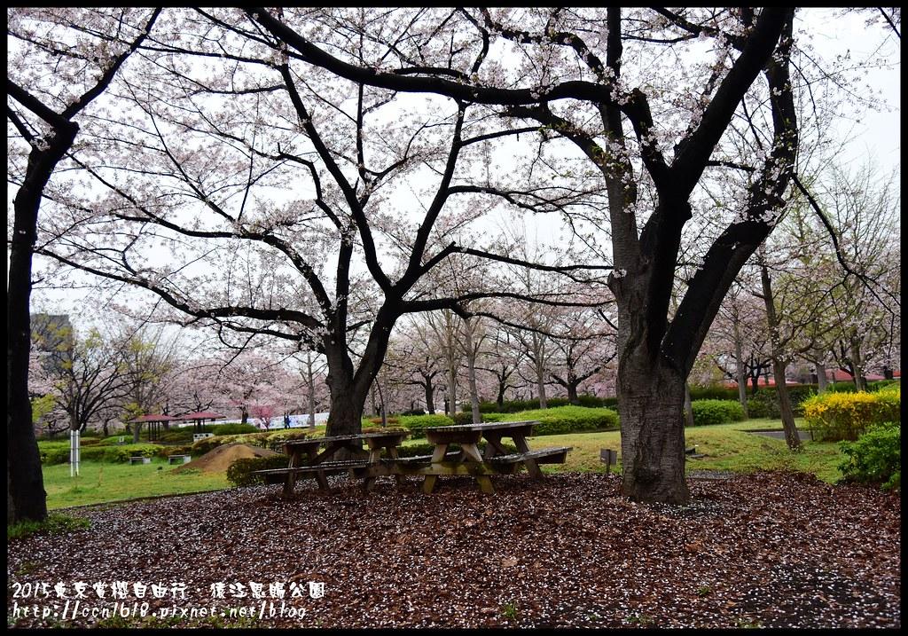 2015東京賞櫻自由行‧猿江恩賜公園DSC_2480