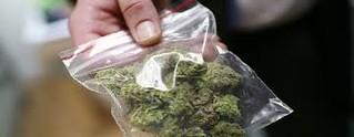 Conversano- fermati con la marijuana al pub