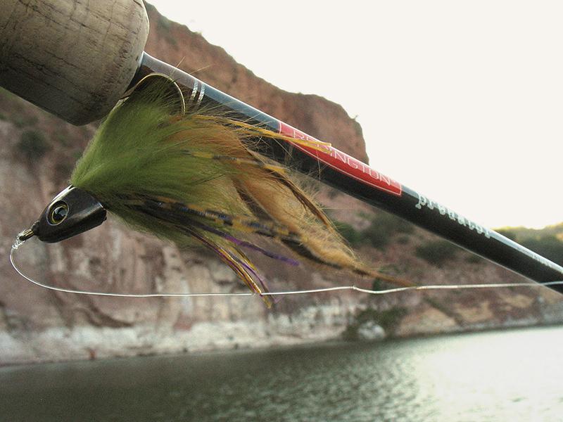 Pesca de Lobina con mosca 3