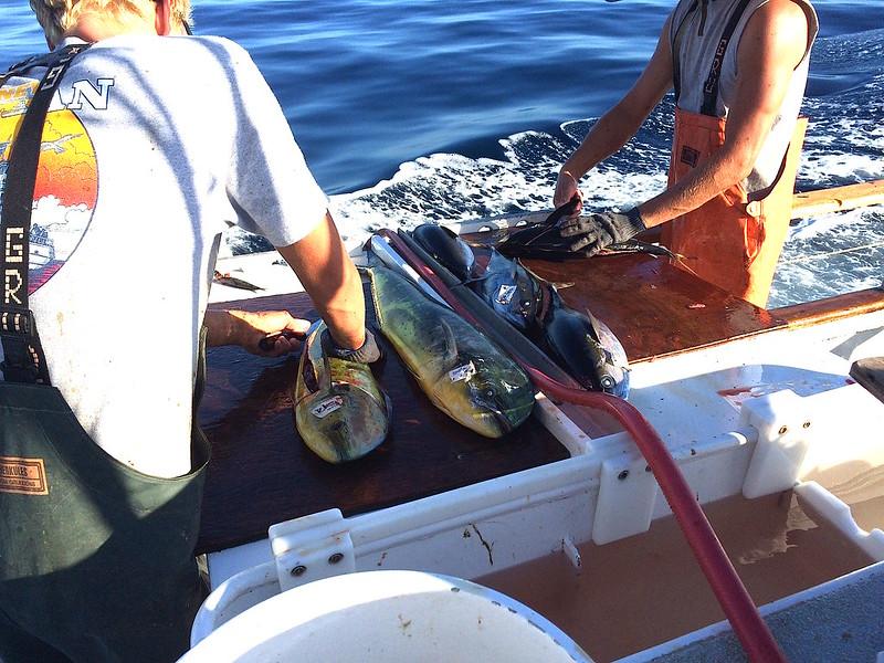 Fishing Wknd.4