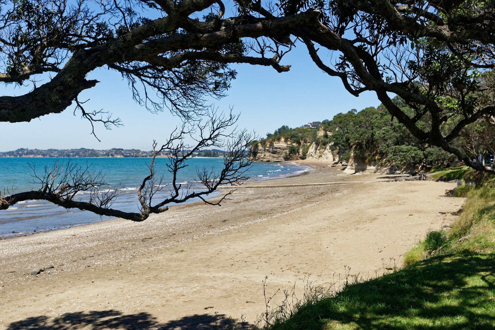 Hatfields Beach New Zealand