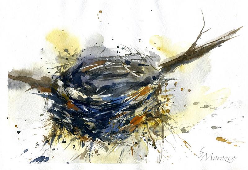 Nest. Watercolor.