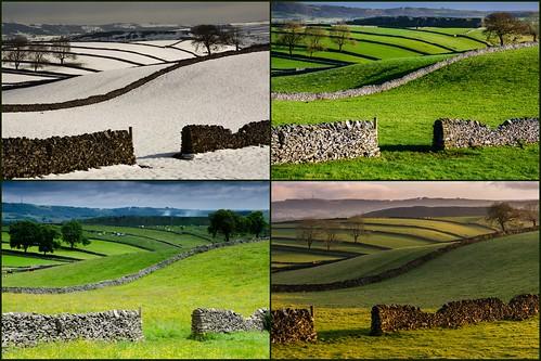 derbyshire collage litton fields seasons winter summer spring autumn ayearinthelife peakdistrict drystonewalls limestone whitepeak cressbrookdale