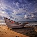 Rowboat by Michael F. Nyiri