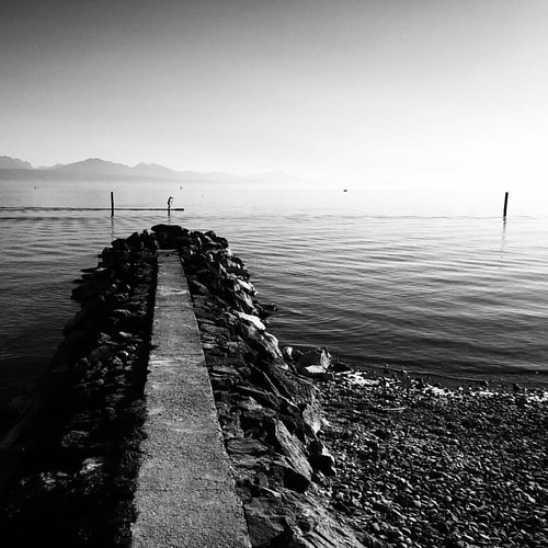 Follow @andrea.gracis #andreagracis #photographer #originalphotography  #shotonmoment #momentlens ​#photography #photooftheday #bestoftheday #nofilter #snapshot #art #beautiful #exposure #composition #focus #capture #moment #blackandwhite #lausanne #lake