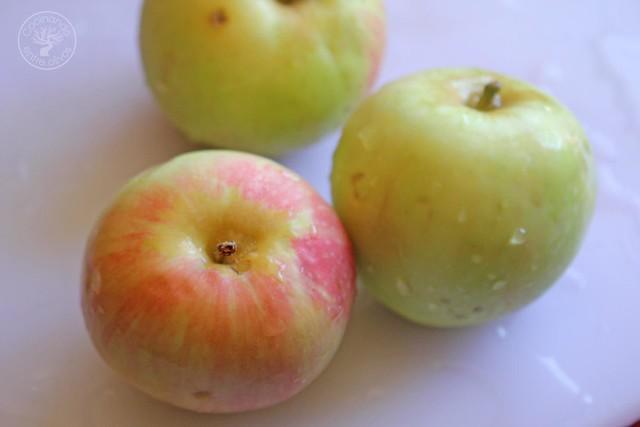 Tartar de remolacha, manzana y aguacate Rodrigo de la Calle www.cocinandoentreolivos.com (11)