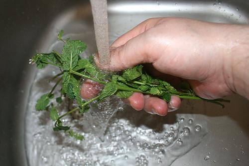 17 - Minze waschen / Wash mint