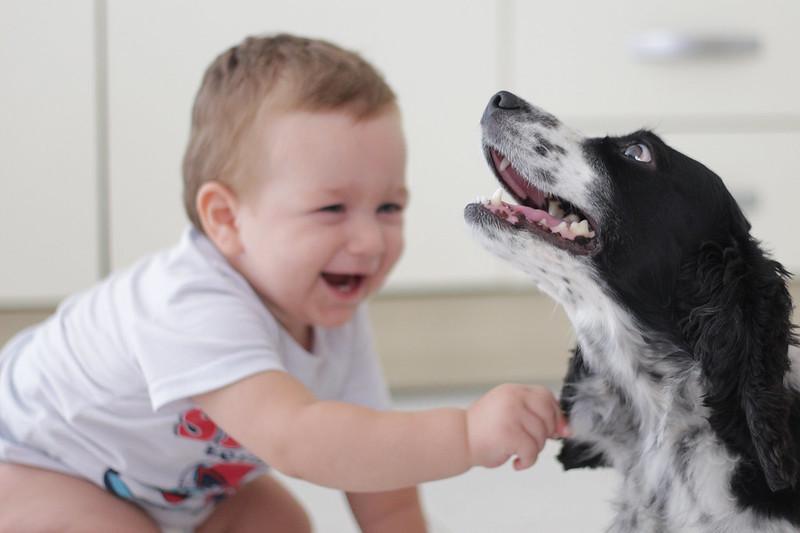 Crescere con un pet Vincy e Zum