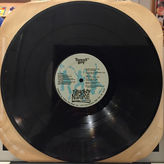 NAUGHTY BY NATURE:NAUGHTY BY NATURE(RECORD SIDE-B)