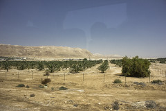 Dead Sea & Jordan Rift Valley 010