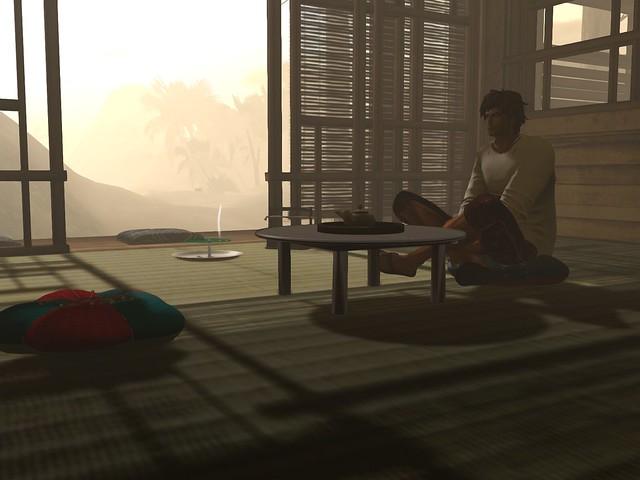 Veil of the Moon  - Aloha Beach -Tea At First Light