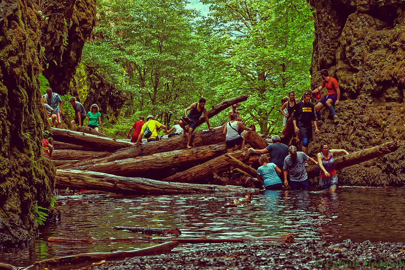 The log jam at Oneonta requires a waist deep dip
