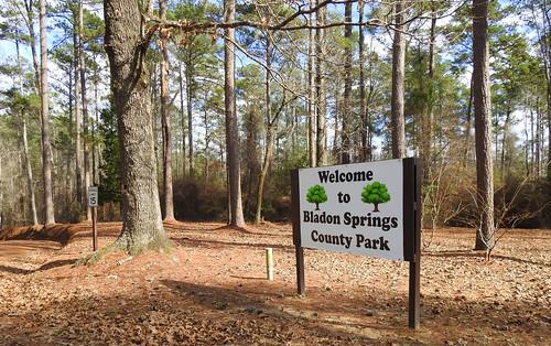 Bladon Springs County Park, Alabama