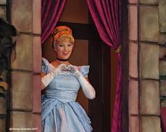 Princess Cinderella_Pff_31662