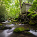 Roaring Fork Grist Mill by Longleaf.Photography